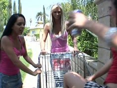 Only one snappy cock for three cock hunters Angelina Stoli, Brooke Banner and Ashli Orion